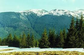 Карпатские горы - тур. комплекс Эдельвейс