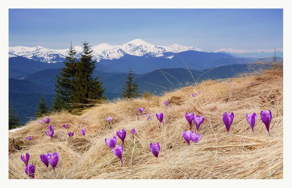 Карпаты на майские праздники