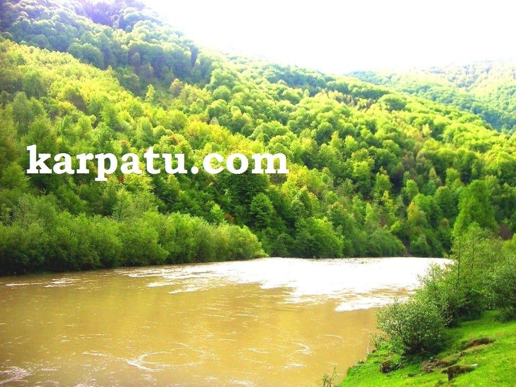 Летний отдых в Закарпатье возле реки