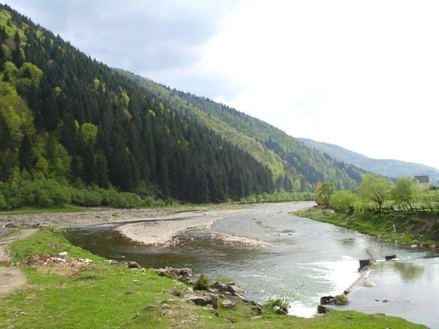 Летний отдых в Карпатах возле речки, Эдельвейс Соль Закарпатье