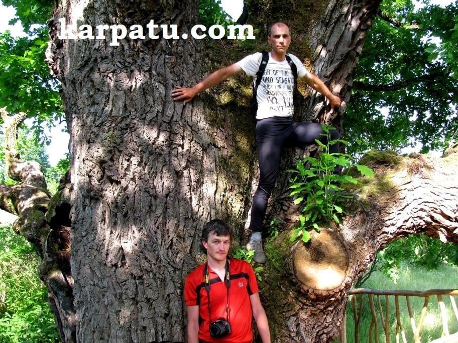 Увлекательный отдых летом в Закарпатье