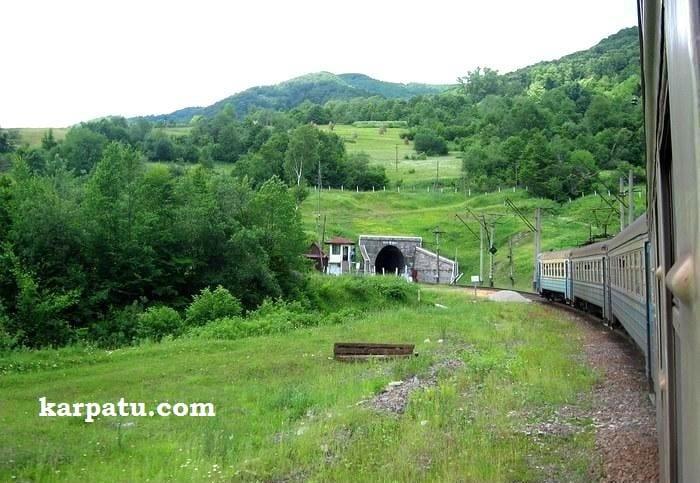 Поездка в Карпаты летом на отдых на поезде