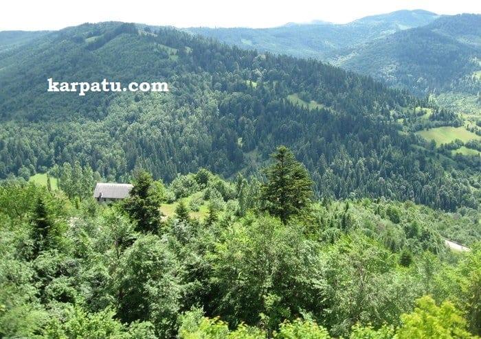 Увликательный отдых познавательно летом в Закарпатье