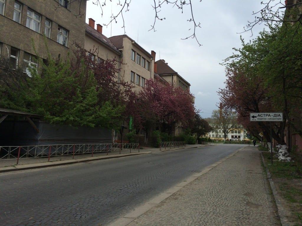 Путевки в Карпаты весной