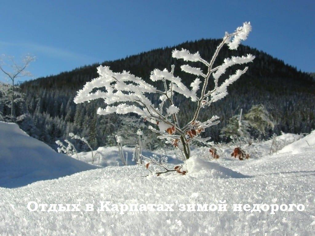 Зима в Карпатах 2017