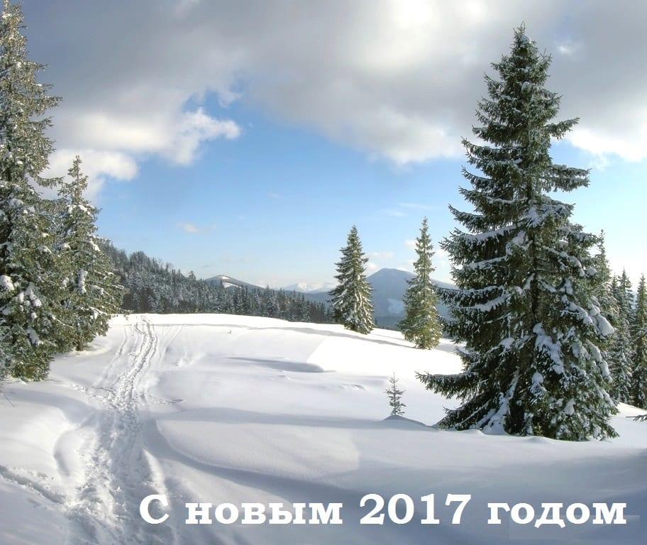 Карпаты отдых зимой 2017