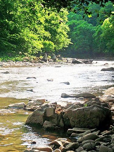 Речка возле комплекса Эдельвейс в селе Соль